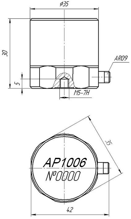 Vneshniy-vid-AP1006.jpg